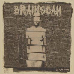 BRAINSCAN 2013
